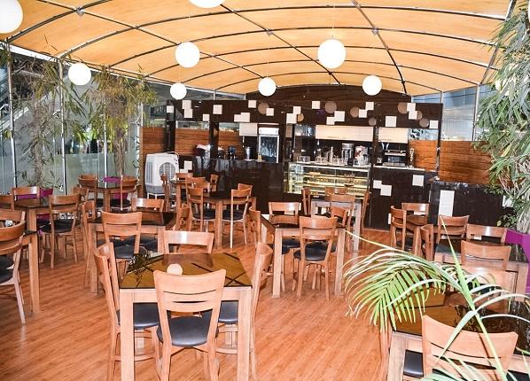 کافه لوتوس