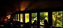 کافه آوانسن (بلوار کشاورز) cafe avantscene keshavarz 12