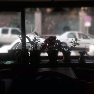 cafe vadi 11