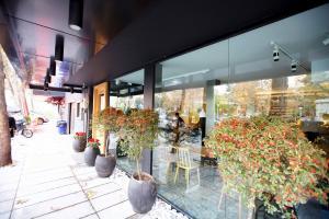 saboos bakery cafe cafeyab 6