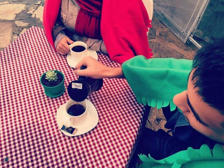 cafe ladybug cafeyab 7