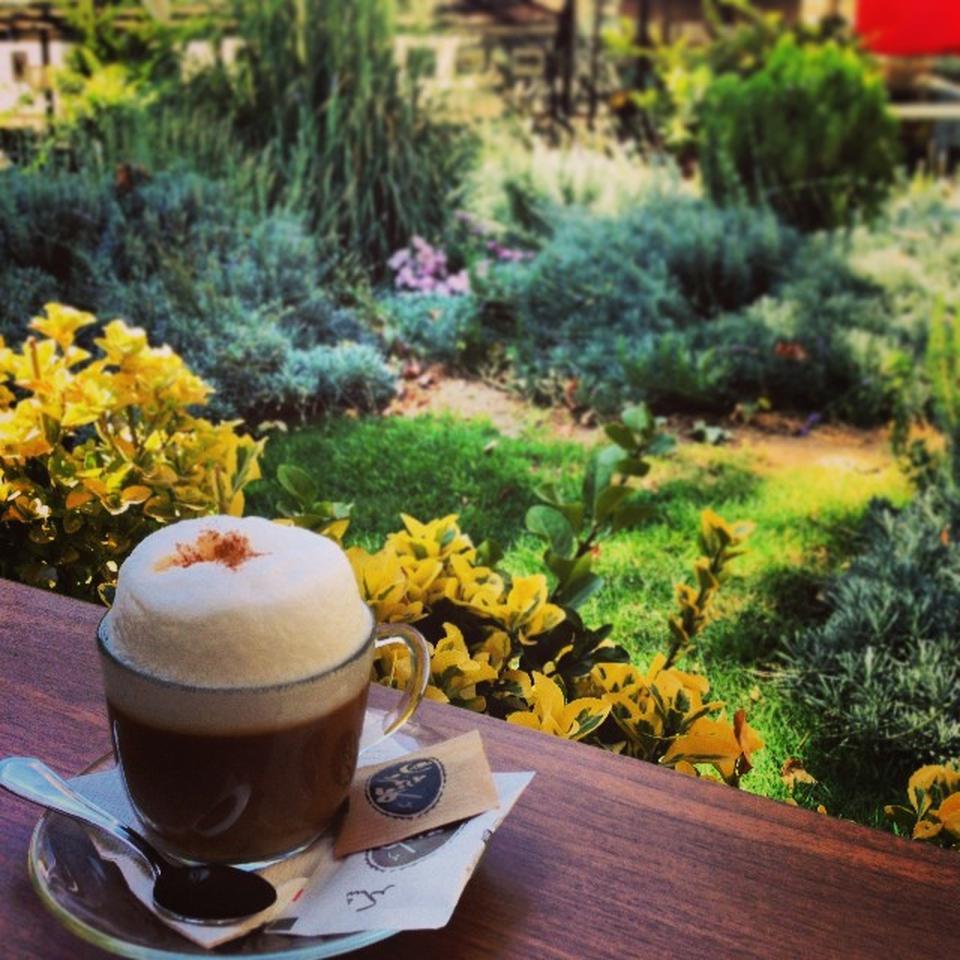 کافه شمرون cafe shemroon 4