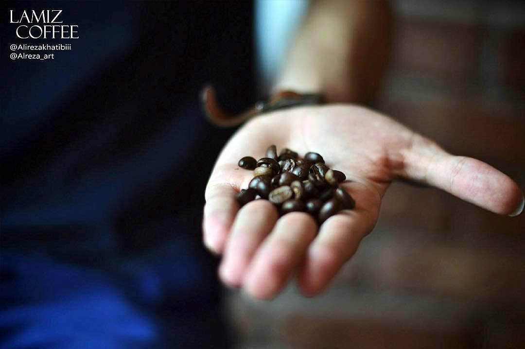 lamiz coffee enghelab 5