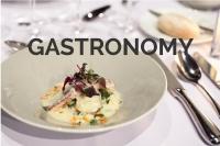 گاسترونومی چیست ؟