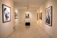 رویداد: نمایشگاه نقاشی مریم نمین