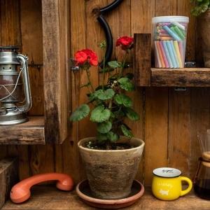 کافه باکارا 1