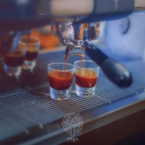 cafe olga cafeyab 6