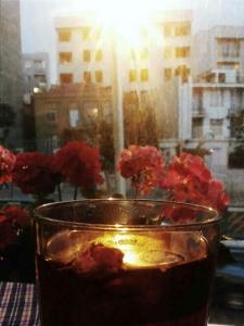 cafe panjereh 13